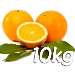 Laranja de mesa 10kg - Navel Powel