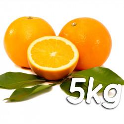 Laranja de mesa 5kg - Navelina