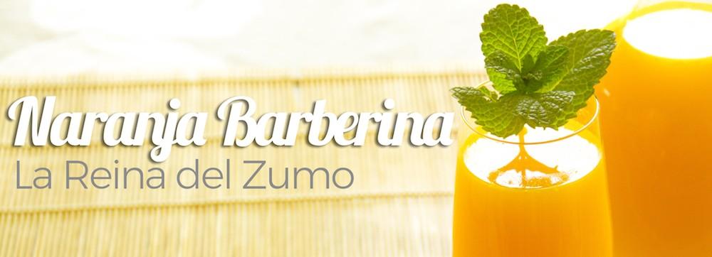 Naranjas de zumo Barberinas 5 kg